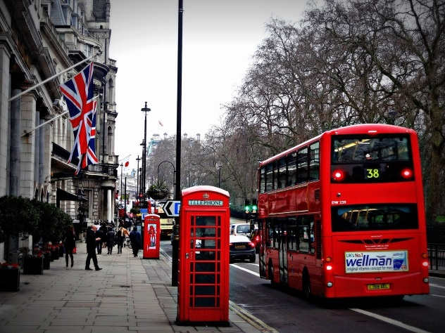 Встолице Англии лошадь попробовала зайти… вавтобус