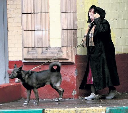 А в это время мама артиста гуляла с его любимой собакой Фросей