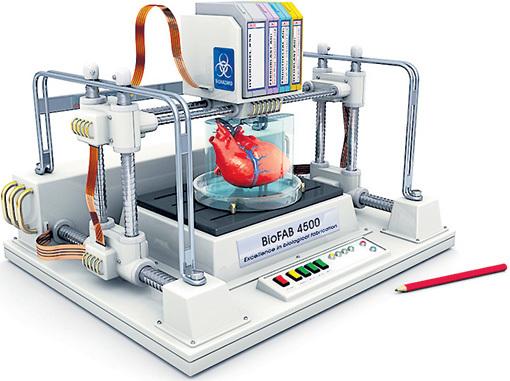 Через какие-то 15 лет 3D-принтер, заправленный «чернилами» из человеческих клеток, начнет печатать запасные органы