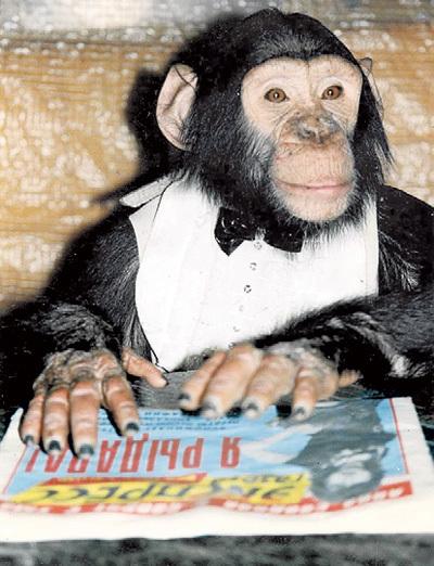 Когда-то Яша с интересом разглядывал фото в нашей газете