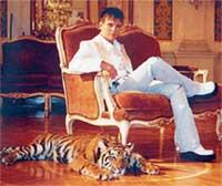 АНДРЮША ГУБИН: балдеет с тигром в антикварном кресле