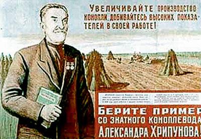 В 30-х годах посевы конопли в стране занимали 680 тыс. га - 80 процентов всей мировой площади, отведенной под эту культуру (плакат 1936 г.)